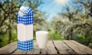 Ambalajlı süt
